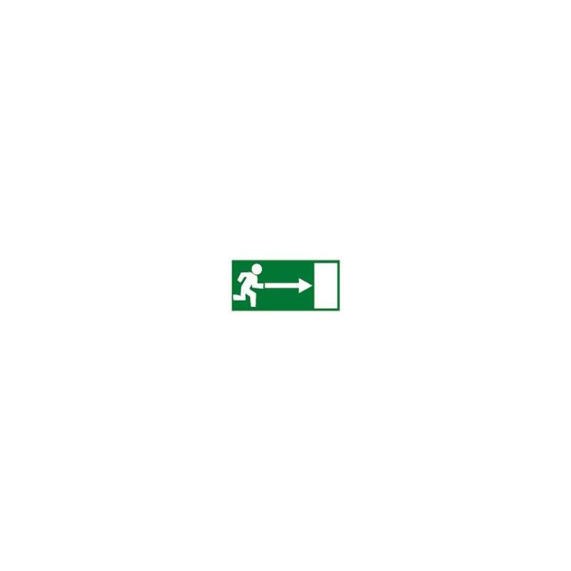 panneau issue de secours droit # DP1401