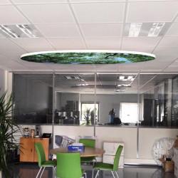 panneau-reducteur-bruit-plafond-ovale # AK0171