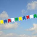 guirlande fanions multicolores queue de pie # PV1113