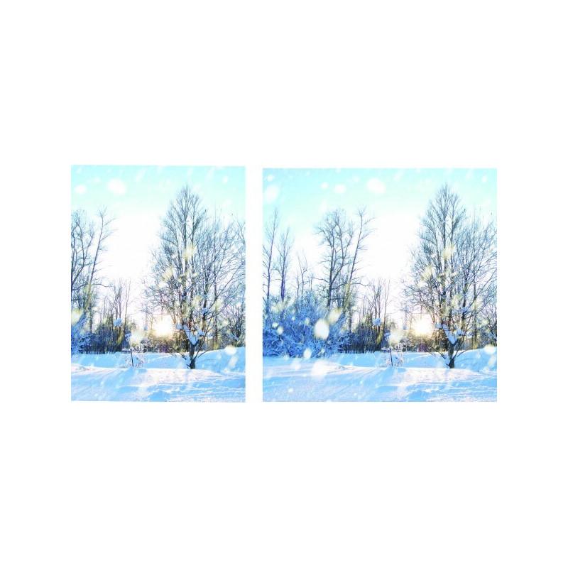 """Visuel fond de vitrine """"Neige"""" # BC1141"""